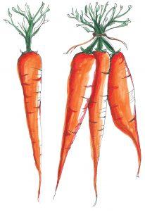 domowy-kubuś-marchewka