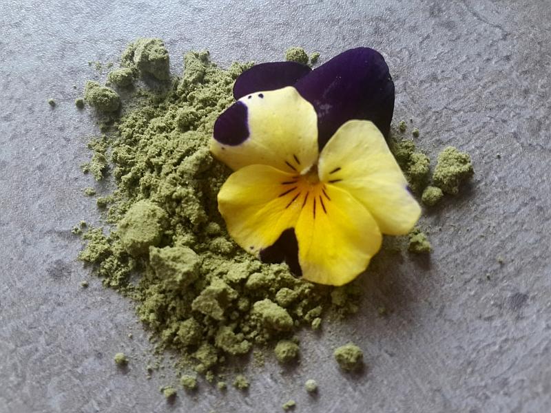 Wypij kwiatka wiosną! Smoothies z forsycją i bratkiem