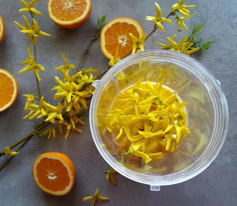jadalne kwiaty - forsycja